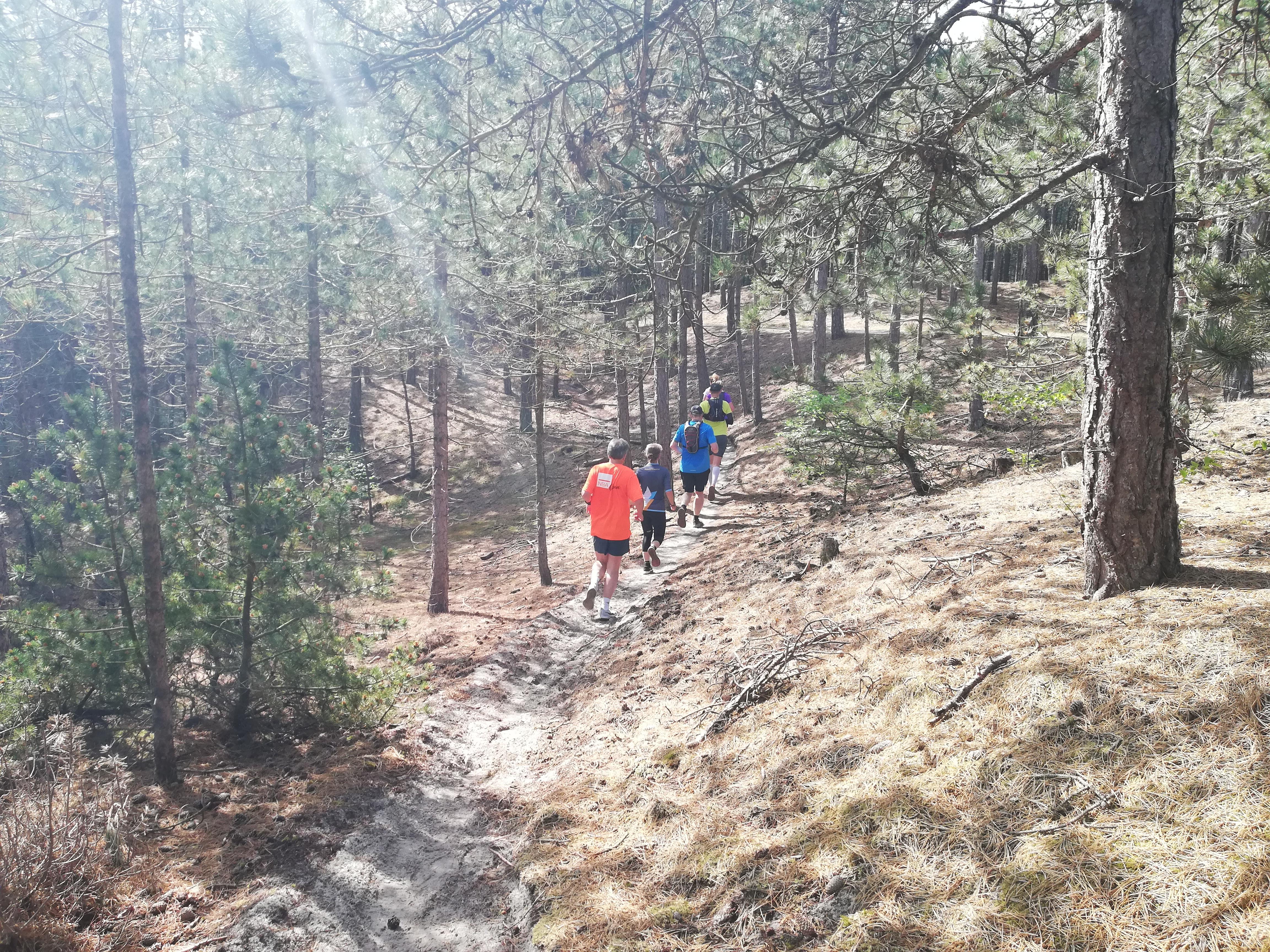 Trailrunning Schoorl
